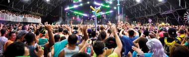 Make the most out of your Electric Daisy Carnival experience!