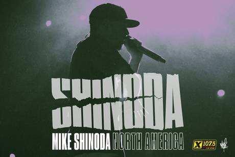 Mike Shinoda (of Linkin Park)
