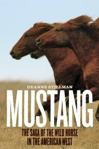 essays about wild horses