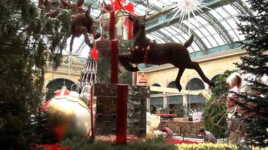 Truly a sight to behold, more than 2,400 man-hours went into crafting the Bellagio's elaborate holiday display.