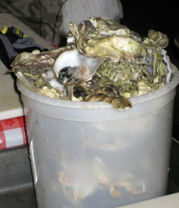 The carnage: A few of the 94 oyster shells that gave Mual and Ryan the victory on August 24.