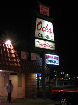 Ocha Thai doesn't look like much but its menu is full of northern Thai specialties.