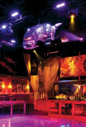 Hands down, Vegas' hottest armadillo-shaped disco ball.