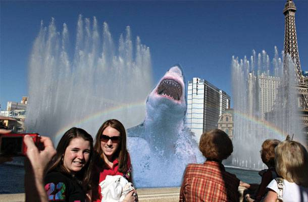 Shark photo-bombing tourists.