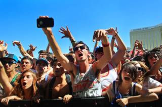 Fans cheer during a set at the Las Vegas stop of the Vans Warped Tour Wednesday, June 20, 2012.