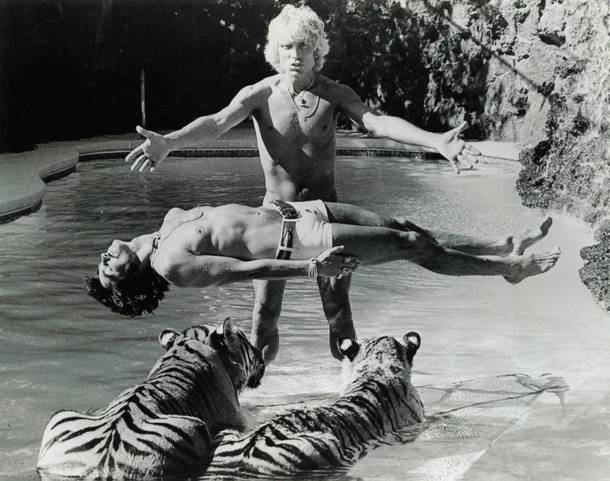 Siegfried & Roy first began performing magic together on the TS Bremen luxury liner.