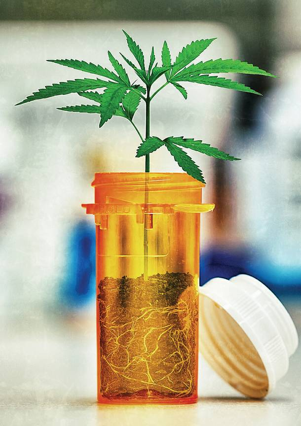 Medical marijuana sold in Clark County will have to be cultivated within the county. Is that requirement too restrictive?