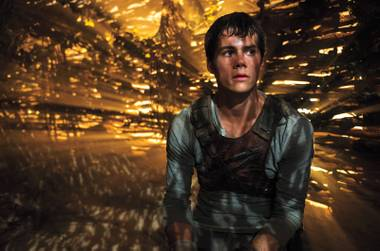 Dylan O'Brien faces danger in the mediocre Maze Runner.
