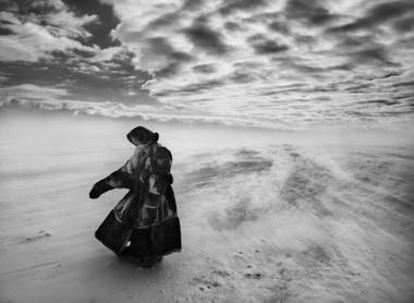 """It's affecting to see Salgado talk about the emotional toll of witnessing so much suffering, and how it triggered his shift in focus to the beauty of nature."""