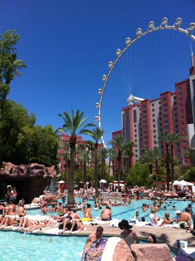 Fun-der the radar: Daytime at Flamingo's Go Pool.