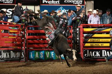 As the PBR has grown into a global phenom, Las Vegas has been a powerful proving ground.