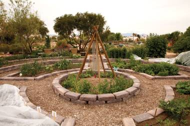This garden proves that growing in this climate can be fruitful and relatively easy once the soil is amended, watering is strategized and planting style is determined.