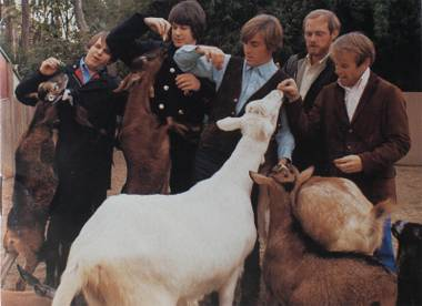 What, exactly, makes Pet Sounds so enduring and beloved? We gave the record a spin (or four) with fresh ears and investigated.