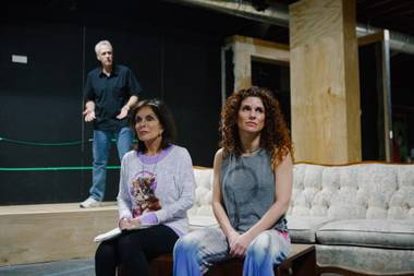 From left, Brad Hoover, Charlene Sher and Rozanne Sher in rehearsal for Other Desert Cities.