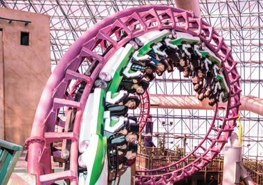 Roller coasters, bumper cars and motion theater attractions win our readers' love.