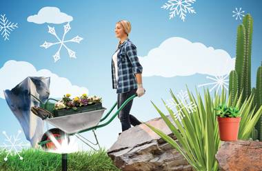 "Landscapes need less water in colder months, however, specific plants may need special attention. Be sure to give each one an individualized touch. ""Determine if your plants are winter hardy and safeguard them accordingly,"" ..."