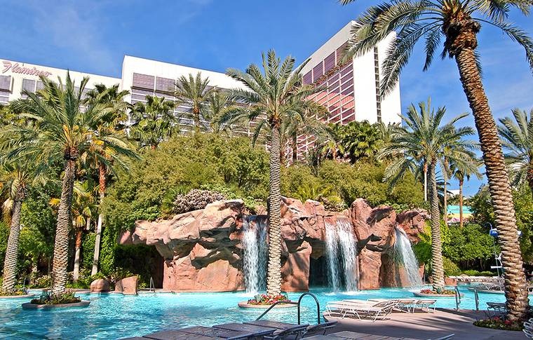 Go Pool At Flamingo Las Vegas Vegas Inc