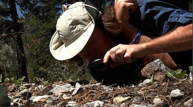 The U.S. Forest Service wants to locate an ant that has only ever been seen on Mount Charleston.  Scientists have not seen the ant since 1954, because it lives most of its life underground.  To find out whether the ant still exists, they've recruited some characters to help with the hunt.