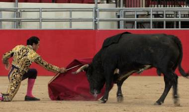 Bullfighting returned to Las Vegas this week with the Toros Las Vegas bloodless bullfighting at the South Point Equestrian Center.